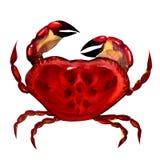 Crabe. peinture d'aquarelle Photographie stock libre de droits