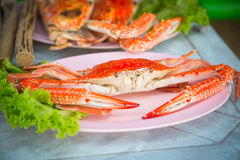 Crabe rouge d'un plat Image stock