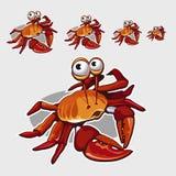 Crabe rouge drôle avec de grands yeux, icône pour votre conception Photo libre de droits