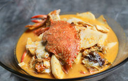 Crabe rouge thaï de cari Photo libre de droits