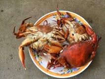Crabe vietnamien de BBQ de serrata de Scylla de crabe de boue ou crabe grillé Photographie stock libre de droits