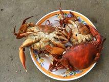 Crabe vietnamien de BBQ de serrata de Scylla de crabe de boue ou crabe grillé Images libres de droits