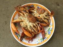 Crabe vietnamien de BBQ de serrata de Scylla de crabe de boue ou crabe grillé Photos stock