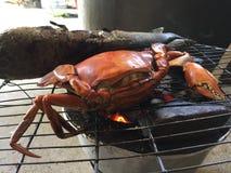Crabe vietnamien de BBQ de serrata de Scylla de crabe de boue ou crabe grillé Photo libre de droits