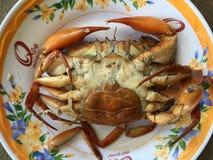 Crabe vietnamien de BBQ de serrata de Scylla de crabe de boue ou crabe grillé Image libre de droits