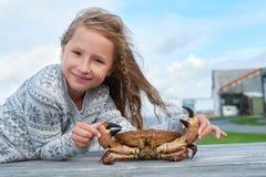 Crabe vivant de Brown de Norvégien images libres de droits