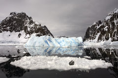 Crabeater-Dichtung - die Antarktis Lizenzfreie Stockfotos