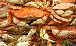 Crabes à vendre Images stock