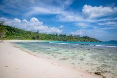Crabes aux Cocos d'Anse image stock
