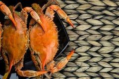 Crabes bleus du Maryland Crabes cuits à la vapeur Fest de crabe photo stock