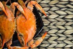 Crabes bleus du Maryland Crabes cuits à la vapeur Fest de crabe Image stock