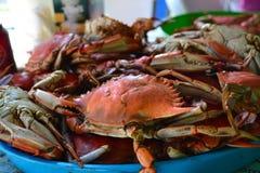 Crabes bouillis Photos libres de droits