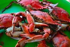 Crabes bouillis Photo stock