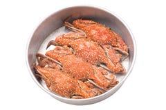 Crabes coulés dans le plateau d'isolement Images stock