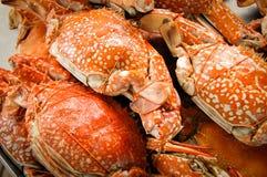 Crabes cuits à la vapeur Images libres de droits