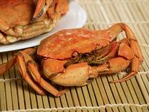 Crabes cuits à la vapeur Image libre de droits