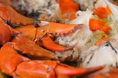 Crabes cuits à la vapeur avec des oeufs de poisson Photo stock