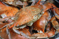 Crabes cuits à la vapeur dans le bac Photos stock