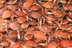 Crabes cuits Photo libre de droits