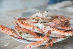 Crabes de cheval cuits à la vapeur. Image libre de droits