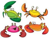 Crabes drôles Photos stock