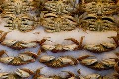 Crabes du marché de Pike Images libres de droits