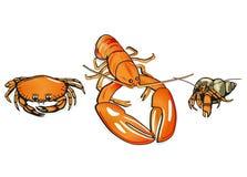 Crabes et langoustine Images libres de droits