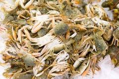 Crabes frais sur l'affichage à vendre pendant le marché de Sabah Farmers Day Photo stock