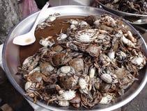 Crabes marinés Photos libres de droits