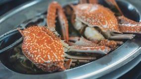 Crabes ou jambes de crabe cuits à la vapeur frais images libres de droits