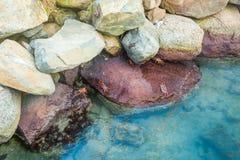 Crabes rouges sur la plage d'Aruba Images libres de droits