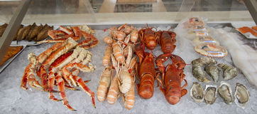 Crabes, scampi et mollusques et crustacés à vendre photo libre de droits