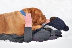 Crabot énorme et son maître dans la neige Photographie stock