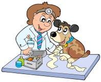 Crabot avec la patte malade au vétérinaire Images libres de droits