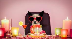 Crabot de joyeux anniversaire photos libres de droits
