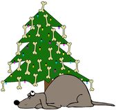 Crabot dormant sous un arbre de Noël Photographie stock