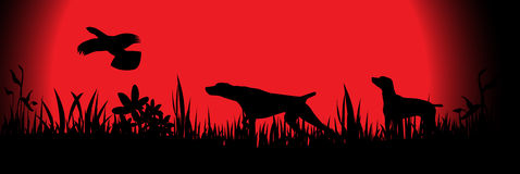 Crabots de chasse Photo libre de droits