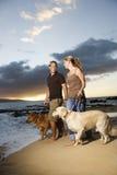 Crabots de marche de couples à la plage Image libre de droits