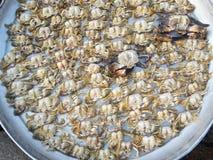 Crabs сырцовая свежая в рынке Стоковое Изображение RF