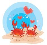 Crabs on beach Stock Image