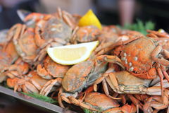 Crabs boiled with lemon. On a metal tray. seafood Royalty Free Stock Photo