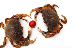 Crabs and cherry tomato Royalty Free Stock Photography
