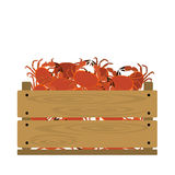 Crabs in crate. Vector crate with seafood. Natural, healthy food concept. Fresh sea animals collected in the wooden box. Flat design style Stock Images