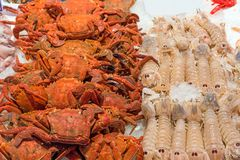 Crabs and crayfish for sale at a market. In Madrid, Spain Stock Photography