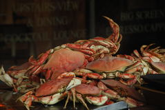 Crabs future food. Crabs stacked for eating in San Francisco Harbour Stock Photography
