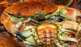 Crabs on ice Stock Photo