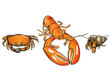 Crabs and lobster Royalty Free Stock Images