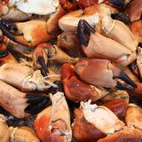 Crabs at a market Royalty Free Stock Images