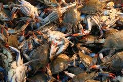 Crabs at a market stall Stock Photos