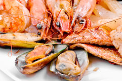 Crabs, mussels, shrimps Royalty Free Stock Images